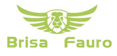 BRISA FAURO logo